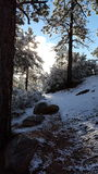 De dag van de pretsneeuw in de wintersprookjesland Royalty-vrije Stock Foto