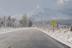 De dag van de sneeuw Royalty-vrije Stock Fotografie
