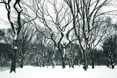 De dag van de sneeuw bij Central Park Stock Fotografie