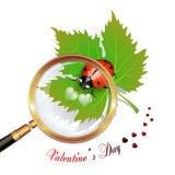 De dag van de valentijnskaart Stock Foto