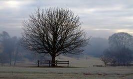 De Dag van de winter Stock Afbeeldingen