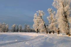 De dag van de winter Royalty-vrije Stock Foto's