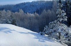 De dag van de winter Stock Foto