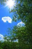 De dag van de zomer bij middag Stock Afbeelding