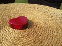 De dag van gelukkig rood hartvalentine op zwarte grond Stock Fotografie