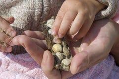 De dag van het strand. handen die shells houden royalty-vrije stock afbeelding