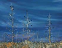 De dag van de lente Weide met droge gras en struiken stock afbeelding