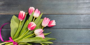 De dag van de moeder `s De roze tulpen op blauwe achtergrond, kopiëren ruimte, hoogste mening stock foto's