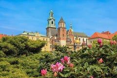 De dag van Nice in Krakau, Polen Stock Foto's