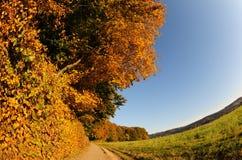 De dag van oktober Royalty-vrije Stock Foto