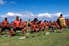 De Dag van Waitangi - de Officiële feestdag van Nieuw Zeeland stock afbeeldingen