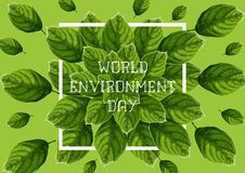 De Dagbanner van het wereldmilieu met groene geweven bladeren, witte kader en teksten op groene achtergrond stock illustratie