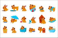 De Dagelijkse Geplaatste Activiteiten van het huisdierenpuppy royalty-vrije illustratie