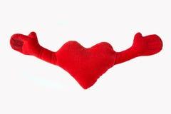 De daghart van Valentine met palmen Stock Afbeelding