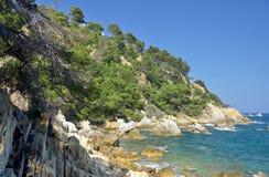 De daglandschap van de zomer met het overzees Stock Fotografie