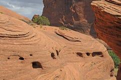 De dagzomende aardlaag van de woestijn stock fotografie