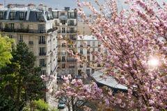 De daken van Parijs royalty-vrije stock afbeelding