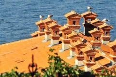 De daken van Piran Stock Foto's