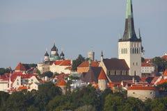 De daken van Tallinn Estland Royalty-vrije Stock Foto's