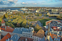De daken van Tallinn Estland Royalty-vrije Stock Afbeelding