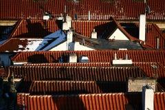 De dakendetail van Praag van de winter Stock Foto