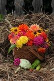 De daling bloeit in geweven mand met hooi en oude omheining op de achtergrond Stock Foto