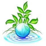 De Daling en de Bladeren van het water Royalty-vrije Stock Afbeeldingen
