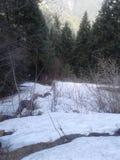 De daling van de sneeuw Stock Afbeeldingen