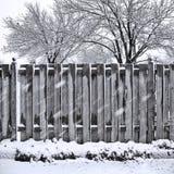 De daling van de sneeuw Stock Foto's