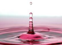 De Daling van de wijn stock foto