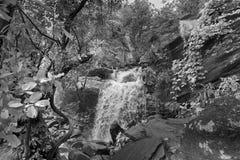 De daling van het Bamniwater, Purulia, West-Bengalen - India royalty-vrije stock foto's