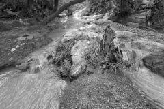 De daling van het Bamniwater, Purulia, West-Bengalen - India stock fotografie