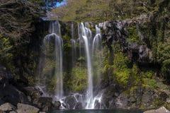 De daling van het Bueatifulwater van regenwoud Royalty-vrije Stock Foto's