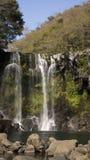 De daling van het Bueatifulwater van regenwoud stock foto