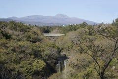 De daling van het Bueatifulwater van regenwoud Stock Fotografie