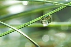 De daling van het water op het gras royalty-vrije stock afbeelding