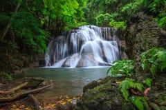 De daling van het water van diep bos Stock Foto's