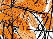 De daling van mangobladeren stock illustratie