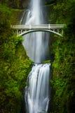 De dalingen en de brug van Multnomah Royalty-vrije Stock Foto