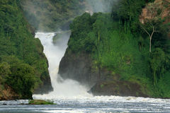 De Dalingen NP, Oeganda, Afrika van Murchison stock foto's