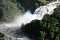 De Dalingen NP, Oeganda, Afrika van Murchison royalty-vrije stock foto's