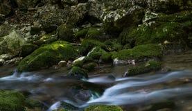 De dalingen van de cascade over bemoste rotsen Stock Afbeelding