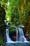 De dalingen van de cascade over bemoste rotsen Royalty-vrije Stock Foto's