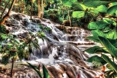 De Dalingen van de Dunn` s Rivier van Jamaïca Stock Foto's