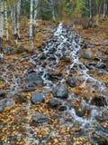 De Dalingen van de herfst Het lange beeld van de Blootstelling van de Waterval van Afon Cwm Llan, door de Watkins Weg, Snowdon, W Stock Fotografie