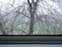 De dalingen van de regen op het venster Royalty-vrije Stock Foto's