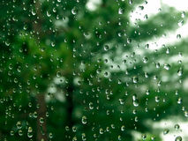 De Dalingen van de regen op venster Stock Foto
