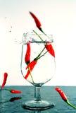 De Dalingen van de Spaanse peper Stock Foto