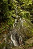 De Dalingen van de Tak van de klip, Grote Rokerige Mtns NP, TN Royalty-vrije Stock Afbeelding