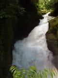 De Dalingen van Devi dichtbij Pokhara: Natuurlijke Sinkhole Stock Fotografie